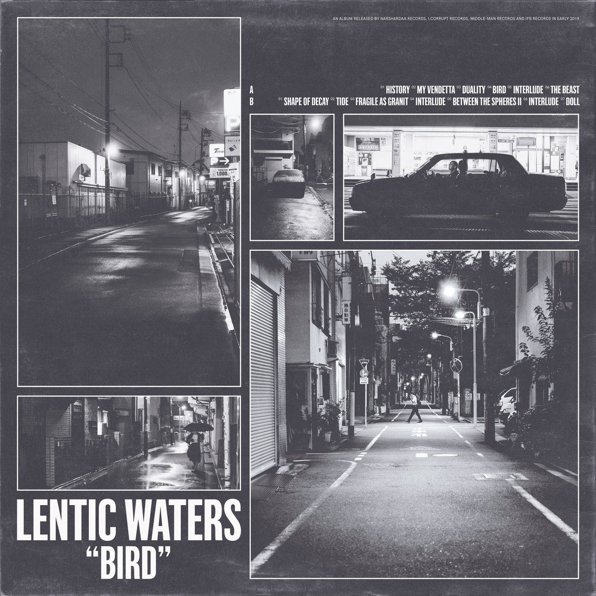 Lentic Waters - Bird